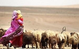 مدیر جهاد کشاورزی قیروکارزین: صدور بیش از 500 شناسه یکتا دامپروری در قیروکارزین