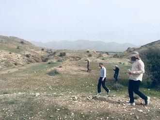 حضور دسته های کوچک ملخ مهاجر در قیروکارزین تائید شد