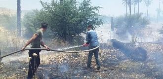 حریق؛ مهمان نا خوانده در مزارع و باغ های قیروکارزین